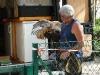 mh3_2011-09-10-017-fauconnier